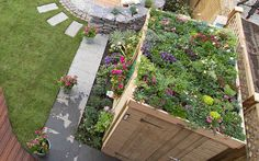 living green shed-roof on Love your Garden episode 4