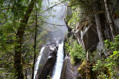 A vertical ascent alongside a waterfall, this hike was worth every moment. Vancouver Hiking, Echo Lake, Waterfall Hikes, Hiking Tours, Island Park, Adventure, Places, Canada, Travel
