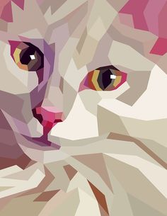 Cats - Liam Brazier Illustration & Animation