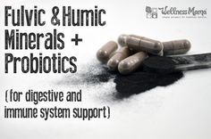 Fulvic and Humic minerals are age old substances just being discovered by modern research. I take a powder with humic and fulvic minerals and probiotics.
