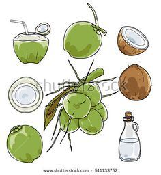 Havanna Party, Ice Cream Cartoon, Image Fruit, Best Coconut Oil, Vegetable Illustration, Building Icon, Green Backgrounds, Art Drawings, How To Draw Hands