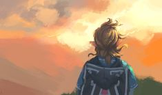 The Legend Of Zelda, Legend Of Zelda Memes, Legend Of Zelda Breath, Breath Of The Wild, Link Botw, Zelda Video Games, Pokemon, Nintendo, Link Zelda