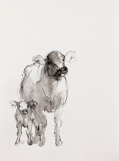 """""""Cows (Two)""""  Artist: Susan Siegel  Sumi Ink on Paper  10.5"""" x 15""""  2012   Price $260.00. Lover her work."""