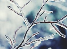 my grown up winter list by Kristin - MaineMomma *** can't wait to get out and take some good winter photos this year! Princess Aesthetic, Disney Aesthetic, Blue Aesthetic, Winter Snow, Winter Time, Winter Christmas, Narnia, The Ancient Magus Bride, Mileena