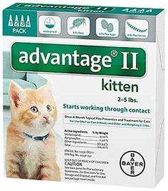 Bayer Advantage II, Kittens, 2 to 5-Pound, 4-Month Bayer http://www.amazon.com/dp/B004QREPBS/ref=cm_sw_r_pi_dp_ALJuvb1J2KEYT