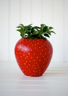DIY Painter Strawberry Herb Planter for your kitchen