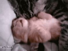 A mom's love, comforting  her baby during  a bad dream. Aww!
