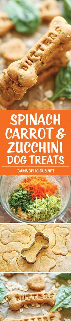 Spinach, Carrot and Zucchini Dog Treats - DIY dog treats that are nutritious, healthy and so easy to make. Plus, your pup will absolutely LOVE these!