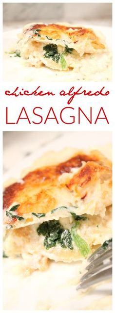 Chicken Alfredo Lasagna Recipe! Homemade and SO good! My family LOVED this super easy dinner recipe!