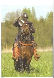 swedish cavalry 30 years war - Google-haku