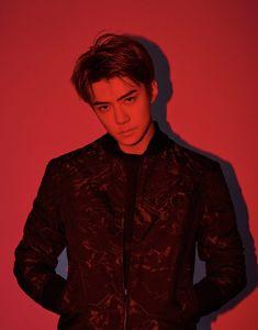 List of attractive sehun 2018 photoshoot ideas and photos Sehun Vivi, Exo Xiumin, Hunhan, Kpop Guys, Exo Members, Global Brands, Red Aesthetic, Daily Photo, Handsome
