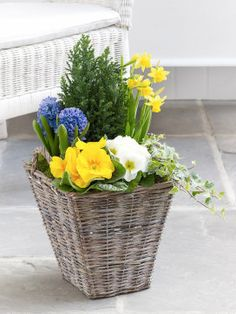 This decorative outdoor planter will give any outdoor space an instant lift.