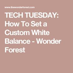 TECH TUESDAY: How To Set a Custom White Balance - Wonder Forest