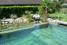 Inspiration for My Natural Pool – elpasonovicegardener Backyard Pool Landscaping, Swimming Pools Backyard, Lap Pools, Indoor Pools, Pool Decks, Landscaping Ideas, Natural Swimming Ponds, Natural Pools, Luxury Pools