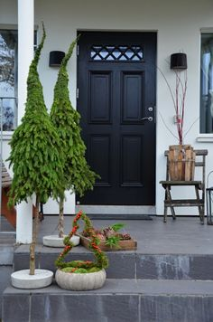 Christmas Planters, Christmas Greenery, Christmas Door Decorations, Rustic Christmas, Christmas Makes, Diy Christmas Ornaments, Christmas Time, Christmas Wreaths, Pinterest Christmas Crafts