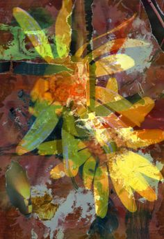 """Espiritualidad Contemporánea:  """"cada letra   una luz""""  collage de José Vega poema del libro """"Hagan lo que Él les diga"""" de Moni Indiveri de Vega"""