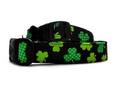 Dog costume alternative - St Patrick's Day Collar - Quirky Green Shamrocks Dog Collars   Collar With Checked & Striped Shamrock print @ 3 Dirty Dawgz