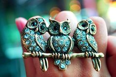 Owl trio ring. I MUST HAVE!!