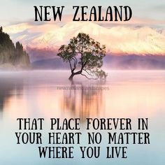 Create Photo, Tourist Spots, Talk To Me, New Zealand, Cool Photos, I Am Awesome, How To Become, About Me Blog, Lovers