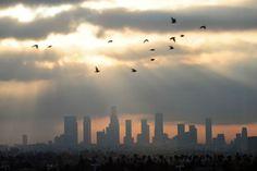 Poluição do ar: o que fazer quando se sofre de asma | #Asma, #Eco18, #LaurenVerini, #PoluíçãoAtmosférica, #PoluiçãoDoAr