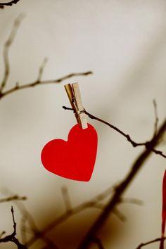 love tree <3