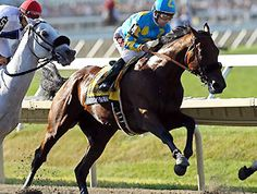 American Pharoah Photos - Victor Espinoza rides atop American Pharoah during the William Hill Haskell Invitational at Monmouth Park on August 2015 in Monmouth, New Jersey. - The William Hill Haskell Invitational Horse Racing Betting Tips, Bob Baffert, William Hill, Triple Crown Winners, American Pharoah, Thoroughbred Horse, Kentucky Derby, Victorious, Riding Helmets