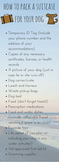When you're bringing your dog on vacation, don't forget to pack a special suitcase! Here's what you need for traveling with your pup. #petfriendly #dogfriendly #vacation #travel #tips #guide #checklist