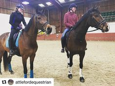 Fab to see a picture of these two busy s together  . #Repost @attlefordequestrian with @get_repost  Bit of lunchtime schooling today on Frankie with the lovely @am_dressage and Flora  nice to see our fellow LMe Bridlework rider who was looking fabulous!  #dressage #dressagehorse #dressagerider #lmebridlework #schooling #bayhorse #merristwood #younghorse #horsesofinstagram #horse #rider #equestrian #equine #teamattleford #attlefordequestrian #teamlmebridle