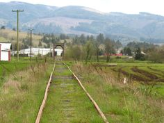 Tillamook County Oregon lies this lonely abandoned railroad line. Us Road Trip, Columbia River Gorge, Cannon Beach, Washington State, Pacific Northwest, North West, Railroad Tracks, Lonely, Abandoned