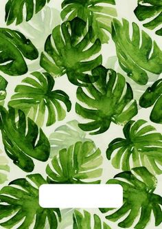50 Ideas Flowers Tropical Illustration Plants For 2019 Cute Wallpapers, Wallpaper Backgrounds, Iphone Wallpapers, Cool Backgrounds, Iphone Backgrounds, Hd Desktop, Textures Patterns, Print Patterns, Pattern Print