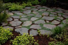 Guest room patio with walkable thyme in the joints.  Ross NW Watergardens | Portland Landscaper