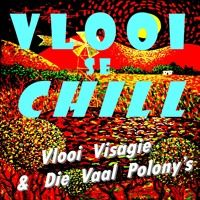 Vlooi Se Chill by Vlooi Visagie & D.V.P. on SoundCloud