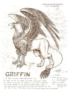 griffin, a mythological beast with an half lion and half eagle appearance.how& my version of griffin? Mythical Creatures Art, Mythological Creatures, Magical Creatures, Fantasy Creatures, Harry Potter Poster, Harry Potter Spells, Fantasy Beasts, Fantasy Art, Hogwarts