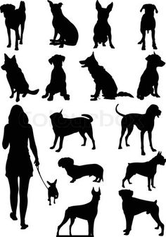 """Buy the royalty-free Stock vector """"Set of dogs silhouette Vector illustration"""" online ✓ All rights included ✓ High resolution vector file for print, web. Silhouette Clip Art, Silhouette Portrait, Dog Ornaments, Doodles Zentangles, Paint Shop, Cricut Vinyl, Dog Art, Silhouettes, Illustrations"""