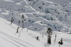 Heli skiing the Pantheon Glaciers at Bella Coola Heli Sports. Saddle Ranch, Columbia, Ski Canada, Park Lodge, Winter Snow, Winter Wonderland, Skiing, Adventure, Mountains