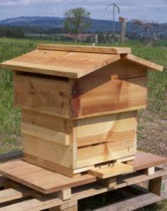 The Homestead Survival | Warre Hive Construction Guide | http://thehomesteadsurvival.com