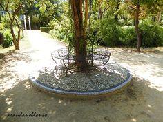 Jardín de las Delicias http://parquemarialuisa-encinarosa.blogspot.com