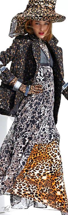 HM  ● Summer 2014 - lots of breezy leopard