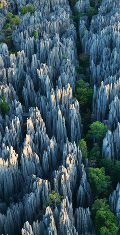 The Yunnan Stone Forest, China