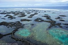 Kapoho Tide Pools snorkelling on east coast of Big Island, Hawaii - fantastic conglomeration of coral and lava from the Kilauea Volcano