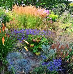 Soest Garden -The plants are carefully selected and planted to offer a variety of colors, shapes, and textures.