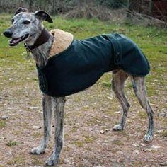 Cosi Pets Wax Cotton Waterproof & Windproof Greyhound Coat