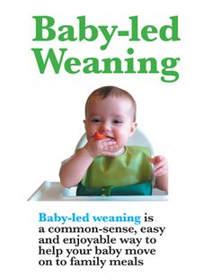 Talk on baby led weaning by Gill Rapley. Really great explanation. Love this.