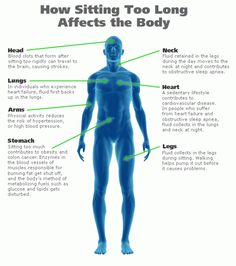 Sitting for too long could cause more than just back pain; from blood clots to colon cancer, sitting for extended periods of time can be seriously detrimental to your health! See these 7 sitting-related health risks, and how to avoid them. Health And Nutrition, Health And Wellness, Health Tips, Health Fitness, Nutrition Guide, Men Health, Holistic Wellness, Nutrition Program, Men's Fitness