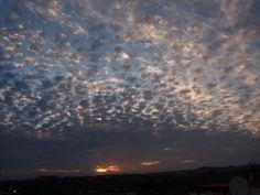 Desde las Islas Canarias  ..Fotografias  : Una mirada a cielo de Maspalomas en la tarde de ho...