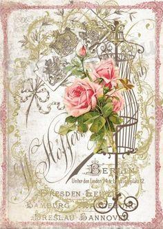 Vintage printables - Roses background