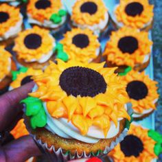 Learn how to make frosting sunflowers for cupcakes and cakes! It's a lot easier than you'd think, I swear :)
