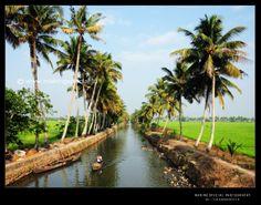 Beauty of Kerala @ Alappuzha, Kerala