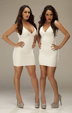 WWE Divas The Bella Twins, The Bella Twins actually had to grow on me , I like that they are mean lol