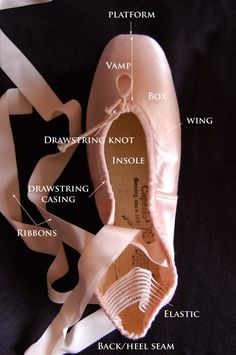 Parts of Pointe Shoe - top view
